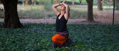 Yoga Divine Wellness Spa