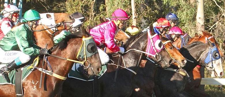 Esk Jockey Club Race Meet