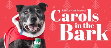 RSPCA's Carols in the Bark