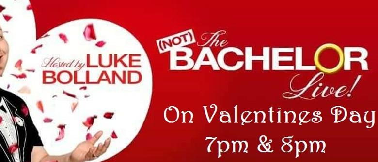 Not the Bachelor Live On Valentine's Day – Fringe World