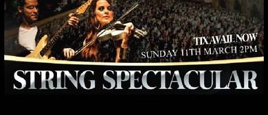 String Spectacular – The Bostocks
