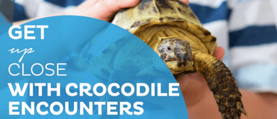 Crocodile Encounters Show and Dinosaurs Alive Craft