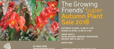 Growing Friends Fantastic Autumn Plant Sale