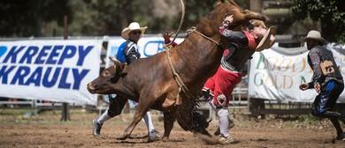 Boddington Lions Rodeo