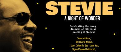 Stevie – A Night Of Wonder