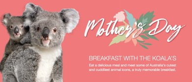 Mother's Day Breakfast With the Koalas