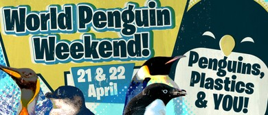 World Penguin Weekend – Penguins, Plastics & You