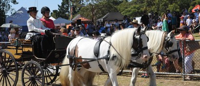 The 91st Red Hill Show