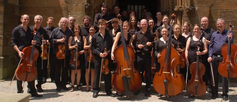 The Bourbaki Ensemble: Light and Dark: Music for Strings