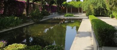 Centuries Old Botanic Gardens – Illustrated Talk