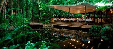 Rainforest Wine & Dine Experience