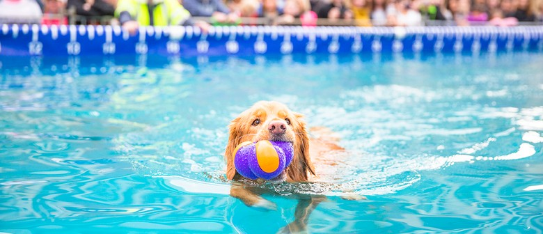 Sydney Dog Lovers Show 2018