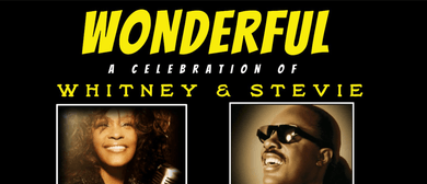 Wonderful – Tribute to Stevie Wonder and Whitney Houston