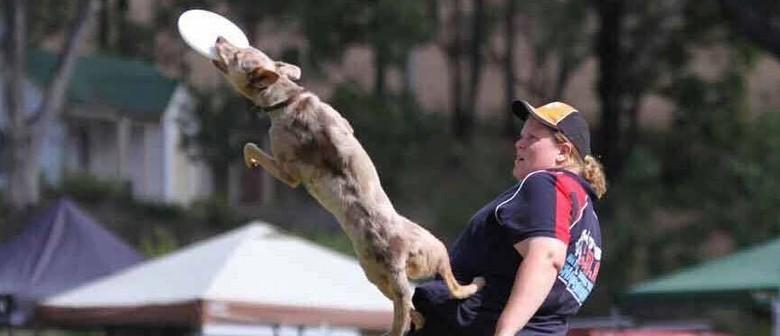 Canine Disc Australia National Championships