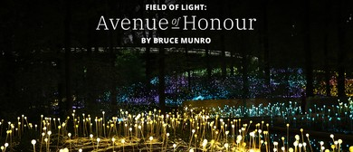 Field of Light: Avenue of Honour
