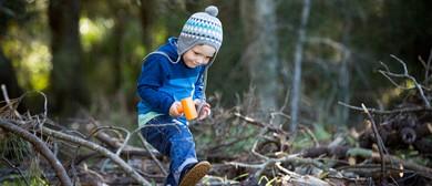 Wild Play Taste of Bush School – Bird Race