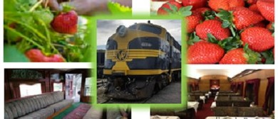 Strawberry & Cherry Festival Heritage Train