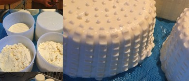Summer Cheese-Making Workshop