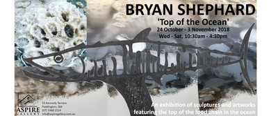 Top of The Ocean: A Solo Exhibition By Bryan Shephard