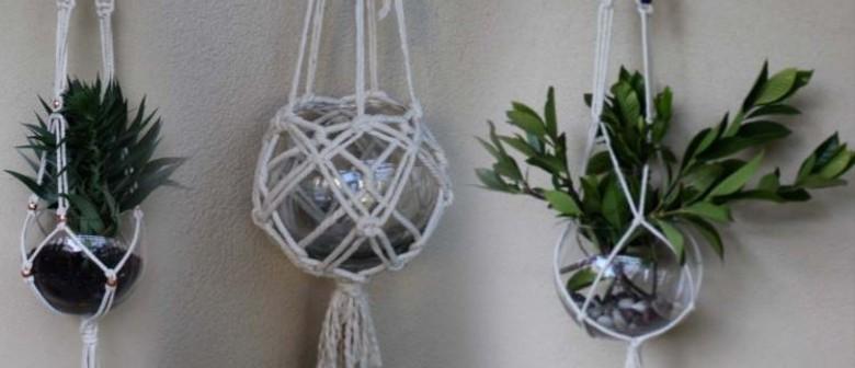 Macramé Workshop – Create a Plant Hanger
