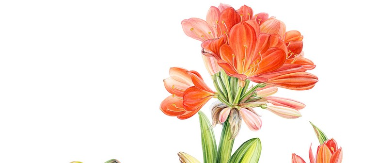 Colour and Design Theory: 3-Day Botanic Art Workshop