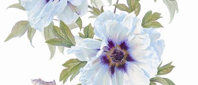 Beginners' Summer Botanic Art Weekday Workshop