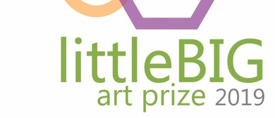 LittleBIG Art Prize Exhibition 2019