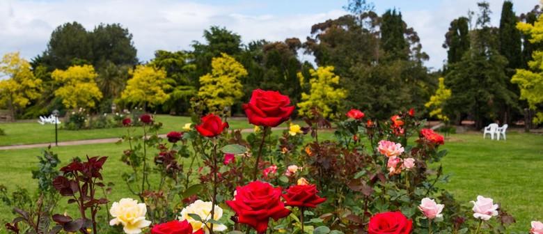 Rose Garden Open Day