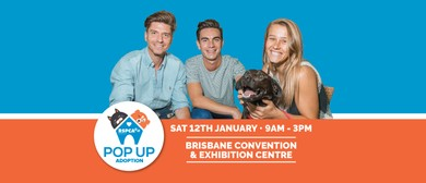 RSPCA Queensland Pop Up Adoption