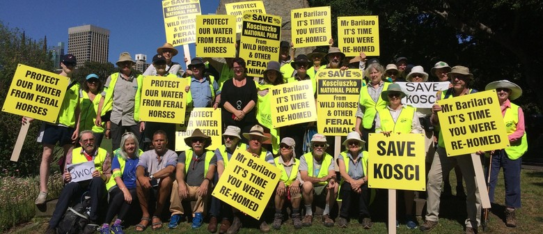 Save Kosci Summit Walk