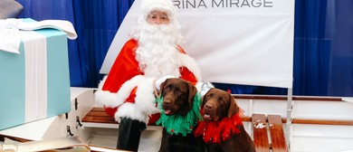 Santa Paws Photos