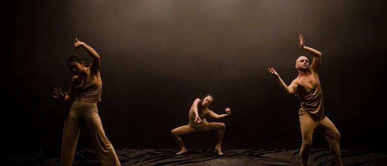 Nightdance by Melanie Lane