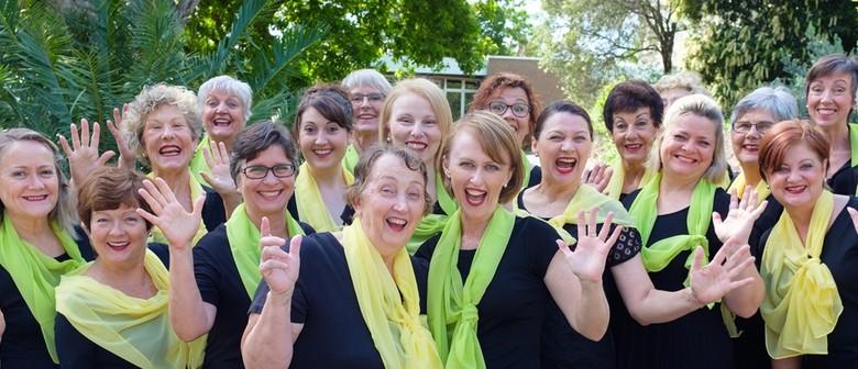 Brisbane City Sounds Vocal Education Programme