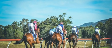 Hygain Mansfield Cup Day