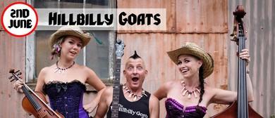 Hillbilly Goats