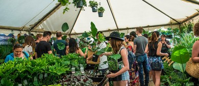 Indoor Plant Warehouse Sale – Rare Plant Party