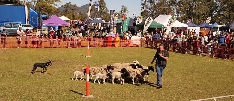 Tiaro Farming and Lifestyle Field Day