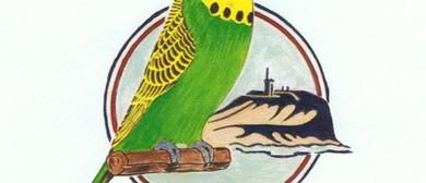 Newcastle Budgerigar Club – Young Bird Show & Sales