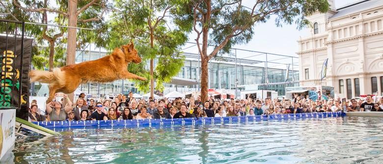 Melbourne Dog Lovers Show