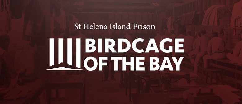 Birdcage of The Bay Exhibition