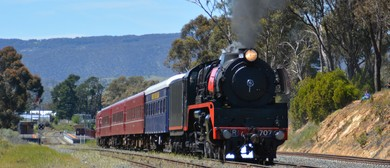 Bendigo Heritage Unwrapped By Train