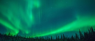 SwanSongs – Northern Lights