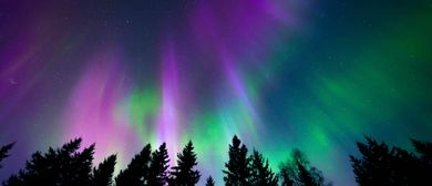 SwanSongs – Northern Lights