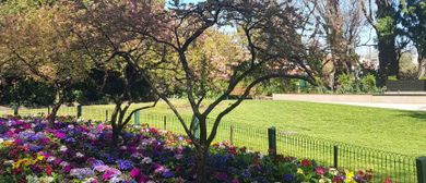 Spring Into Gardening