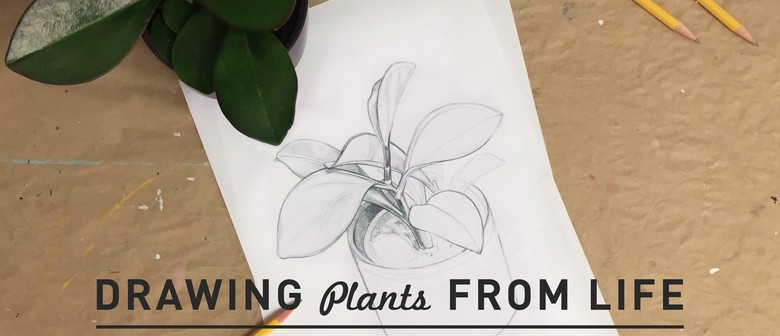 Meet the Maker: Drawing Plants From Life With Outer Island
