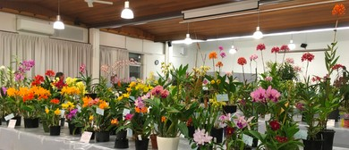 North Brisbane Orchid Society Annual Show