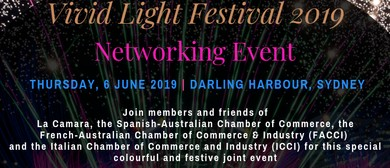 Vivid Light Festival 2019 – Networking Event