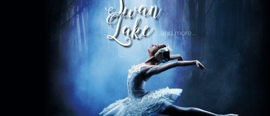 Swan Lake and More