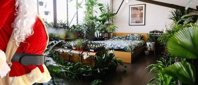 Indoor Plant Sale – Christmas In July