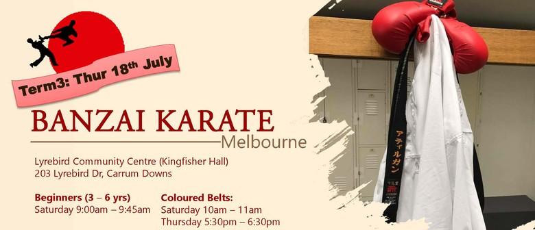 Banzai Karate Melbourne – Term 3